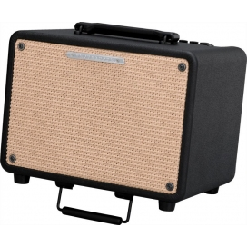 IBANEZ T30 ACOUSTIC COMBO 30W