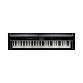 PHYSIS H1 PIANO DIGITALE MODELLI FISICI TASTIERA IN LEGNO
