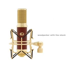 BLUE WOODPECKER RIBBON MIC KIT