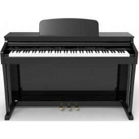 RINGWAY RP8810 PIANOFORTE DIGITALE CON ACCOMPAGNAMENTI