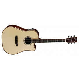 CORT AS-M5 ALL SOLID W/CASE