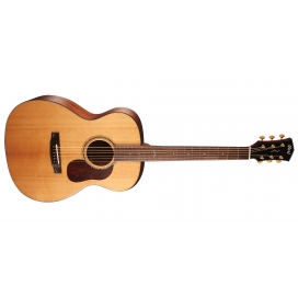 CORT GOLD O6 NATURAL + CASE
