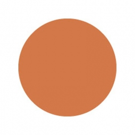 SHOWTEC COLOR SHEET 1.22 MT. X 0.55 MT. GELATINA PER FARI ORANGE