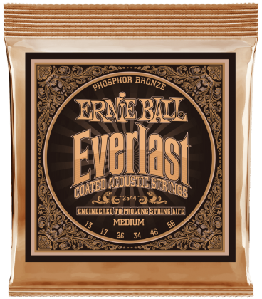 ERNIE BALL 2544 EVERLAST PHOSPHOR BRONZE MEDIUM