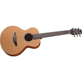 TAKAMINE G MINI NS