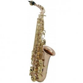 ROY BENSON AS-202G SAX ALTO BRONZE LACCATO