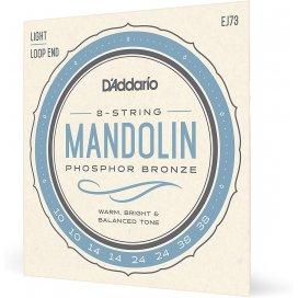D'ADDARIO EJ73 MANDOLINO