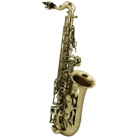 ROY BENSON AS-201 SAX ALTO PER BAMBINI
