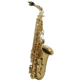 ROY BENSON AS-202 SAX ALTO