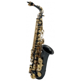ROY BENSON AS-202K SAX ALTO BLACK/GOLD