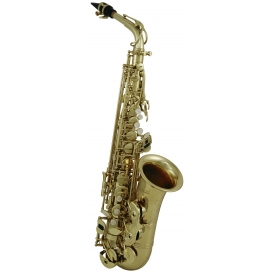 ROY BENSON AS-302 SAX ALTO